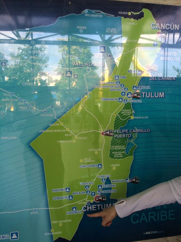 ADOバスの路線図