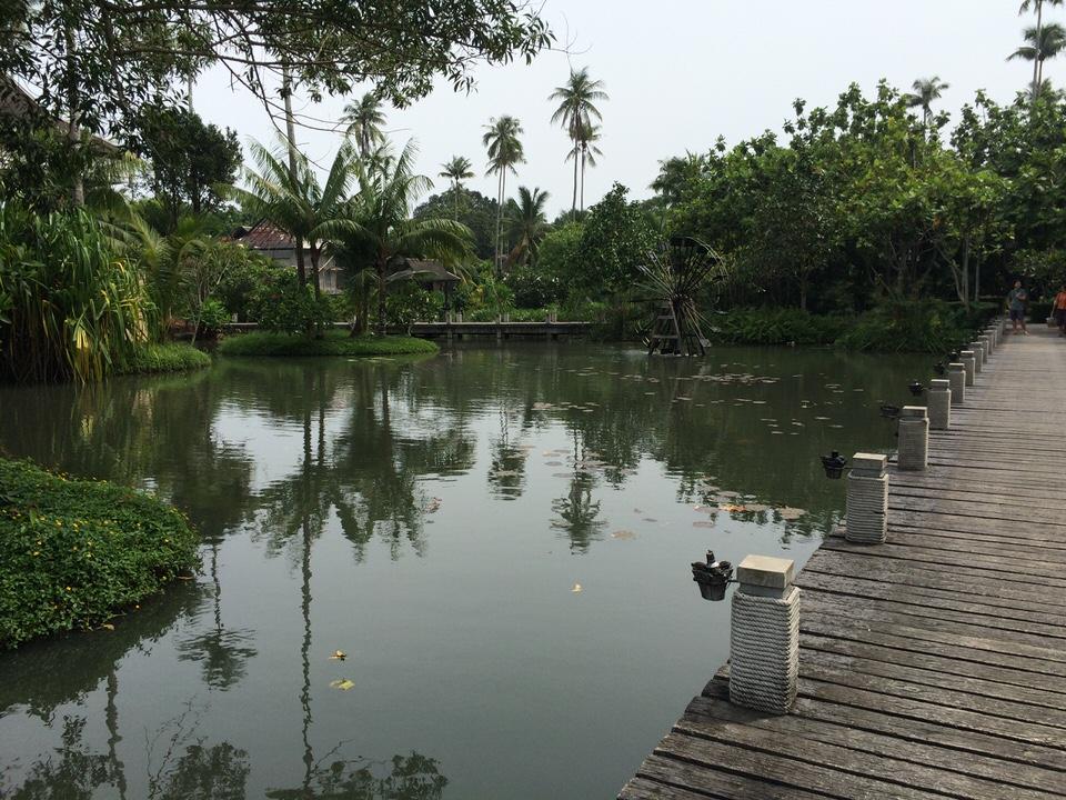 水車のある大きな池とそこにかかる橋
