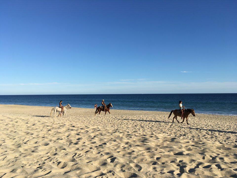 砂浜で乗馬を楽しむ人々