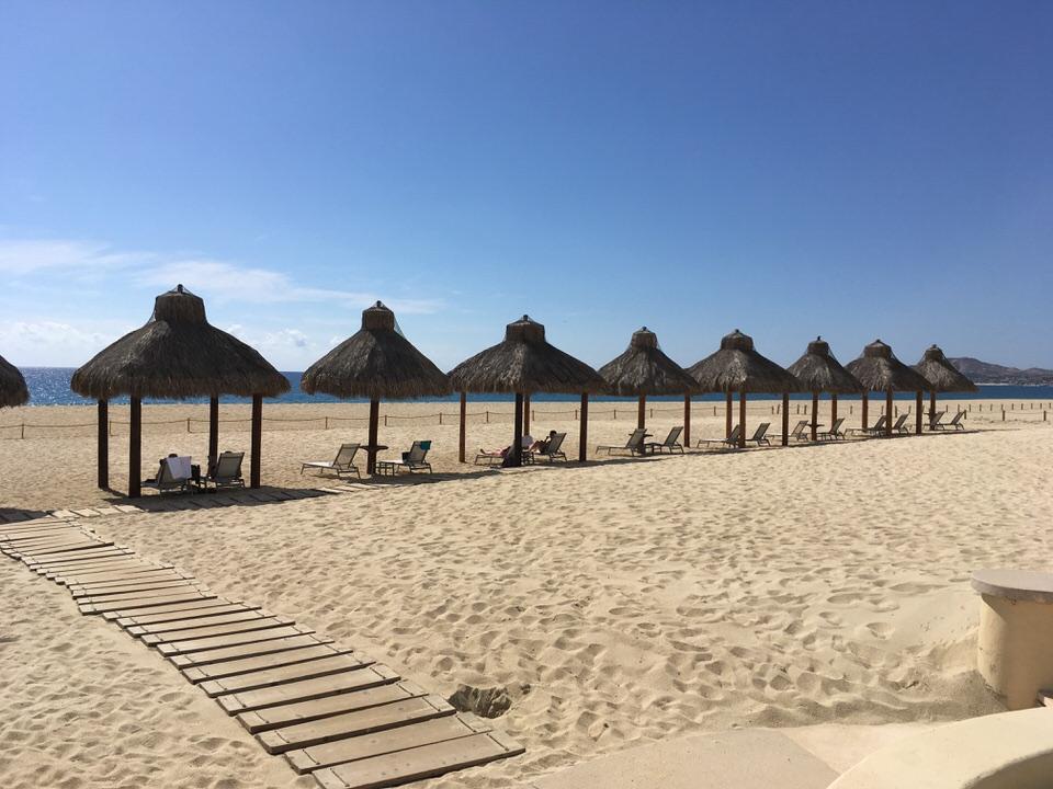 茅葺き屋根のパラソルが並ぶ砂浜