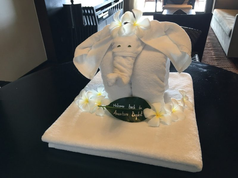 タオルの象がお出迎え